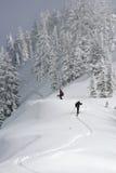 backcountry лыжники стоковое фото