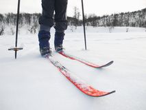 backcountry лыжник Стоковое Фото