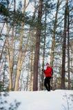 backcountry лыжник Стоковая Фотография
