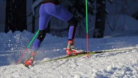 backcountry лыжник Стоковые Фотографии RF