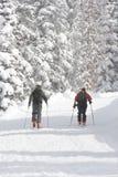 Backcountry die in de winter wandelt Stock Afbeelding