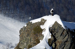 Backcountry freestyle in Krasn. Aya Polyana. Sochi - capital of Winter Olympic Games 2014. Russia Stock Images