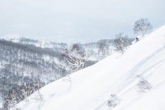 Backcountry het ski?en steile helling van de rug van Niseko-Berg royalty-vrije stock afbeeldingen