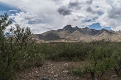 Backcountry mountain scenic, southwest New Mexico. A scenic of the eastern side of the Florida Mountains in southwest New Mexico near the town of Deming, luna stock image