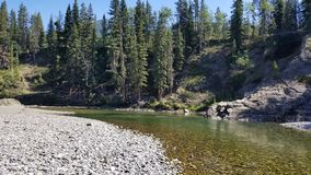 Backcountry river fishing. Fly fishing backcountry waters in the rocky mountains Stock Image