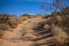 Backcountry road in the desert. Uphill backcountry road in the Mojave desert. Image taken in the Joshua Tree National Park, California royalty free stock photo