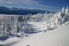 Backcountry Ski fahrende 5 lizenzfreie stockfotografie