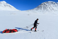 backcountry skier Royaltyfria Foton