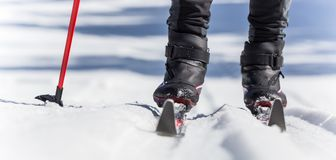 backcountry skier royaltyfri fotografi