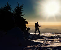 Backcountry skier reaching the summit Royalty Free Stock Photo
