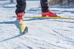 Backcountry Skifahrer Lizenzfreies Stockfoto