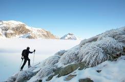 Backcountry Skifahrer Stockfotografie