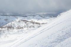 Backcountry telemark het ski?en Hokkaido, Japan royalty-vrije stock fotografie
