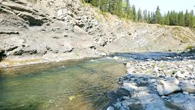 Backcountry trout stream. Fishing a backcountry trout river in the rocky mountains Stock Photos