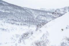 Backcountryskiër in de gele helling van het skis onaangeroerde poeder in Hokkaiodo, Japan royalty-vrije stock afbeeldingen