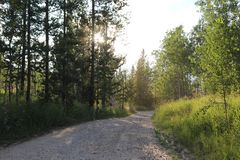 Backcountryweg in Grote Tetons stock foto