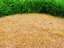 естественное backcround цветастое Стоковые Фото