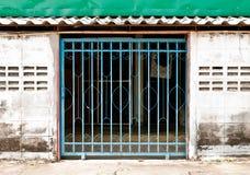 backdoor Obraz Royalty Free