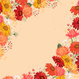 Backdrop with gerbera and aster. Red and yellow color. Stock Image