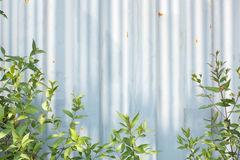 Backdrop of an old corrugated metal sheet Royalty Free Stock Images