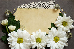 Backdrop of old photo with chamomiles and lace Royalty Free Stock Image