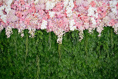 backdrop pink flowers and green leaf arrangement for wedding ceremony