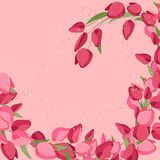 Backdrop with spring tulips. Red and pink color. Stock Photos