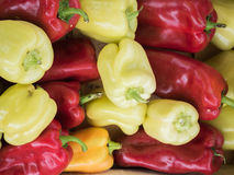 Backdrop of stacked large, sweet, red and yellow peppers. Royalty Free Stock Images