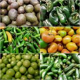 Collage with a variety of vegetables, fresh and healthy food, background and texture. Backdrop to announce a market vegetables, vegetarian food, ingredient for stock images