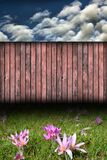 Backdrop with wild flowers and fence Stock Photo