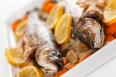 Backed seabass Royalty Free Stock Images