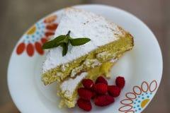 Backen Sie, Schwammkuchen mit Erdbeere und die grüne Minze, die mit besprüht wird zusammen lizenzfreies stockbild