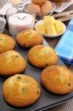 Backenbestandteile mit frischen Muffins Lizenzfreie Stockbilder