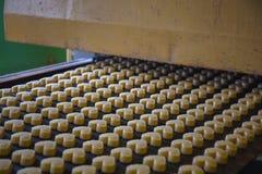 Backenfertigungsstraße in der Plätzchenfabrik Ungekochte Kekse in der Form von Herzen auf Förderband lizenzfreies stockfoto