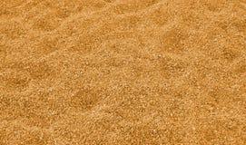 Backfround sand Royalty Free Stock Photography