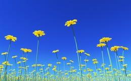 Backgound #4 da flor Imagens de Stock