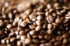 Backgound arrostito dei chicchi di caffè, spazio della copia, vista superiore Cappuccino, caffè espresso scuro, bevanda nera dell Immagini Stock Libere da Diritti