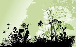 Backgound com plantas. Foto de Stock