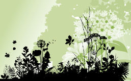 Backgound con las plantas. ilustración del vector