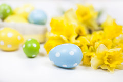 Backgound de Pâques outre des oeufs peints et des fleurs jaunes Images stock
