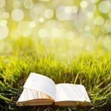 Backgound di estate con il libro aperto Fotografia Stock