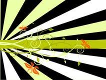 Backgound floral Imagem de Stock