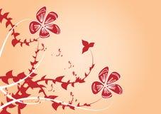 Backgound floral Imagens de Stock
