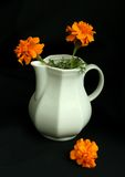 backgr μαύρος vase λουλουδιών άσπρος κίτρινος Στοκ εικόνα με δικαίωμα ελεύθερης χρήσης