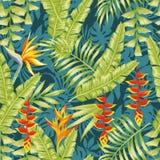 Backgr inconsútil tropical de la selva de la noche del modelo de las flores y de las hojas Foto de archivo