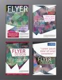 Backgr moderne de tract d'insecte de rapport annuel de calibre de conception de disposition Images libres de droits