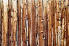 Backgriond en bois Image stock
