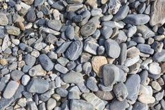 海石头或湿光滑的黑石头在海滩作为backgro 免版税库存图片