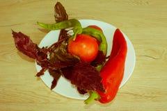 Backgro de paprika, Basil et tomate verts et rouges Incluez l'org photos stock