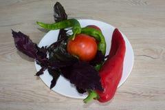 Backgro del peperone dolce, basilico e pomodoro verdi e rossi Includa le verdure ed il pepe organici sul pavimento di legno Fotografia Stock Libera da Diritti